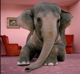 Marvelous The Elephant In The Living Room? | Tobacco Harm Reduction: News U0026 Opinions Part 13